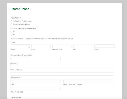 donation form style