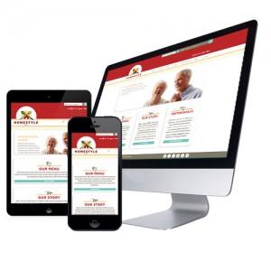 NetSuite eCommerce (Woocommerce) Website Example